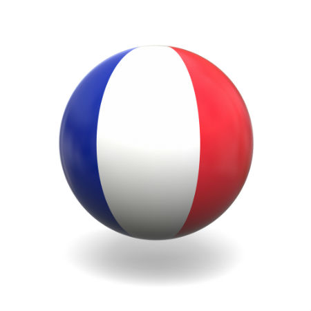 Eurovision Song Contest 2014 France flag