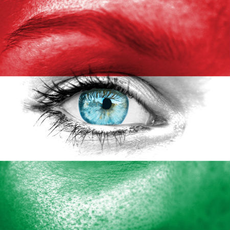 Road to Eurovision Week 2 Hungary flag