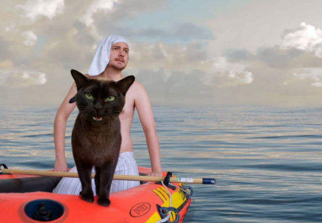 Life of Pi (image (c) Dave and Sarah, Movie Cats, Instagram)