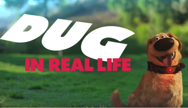 It's Dug! Inr eal life, as adorable as ever (image via YouTube (c) Disney)